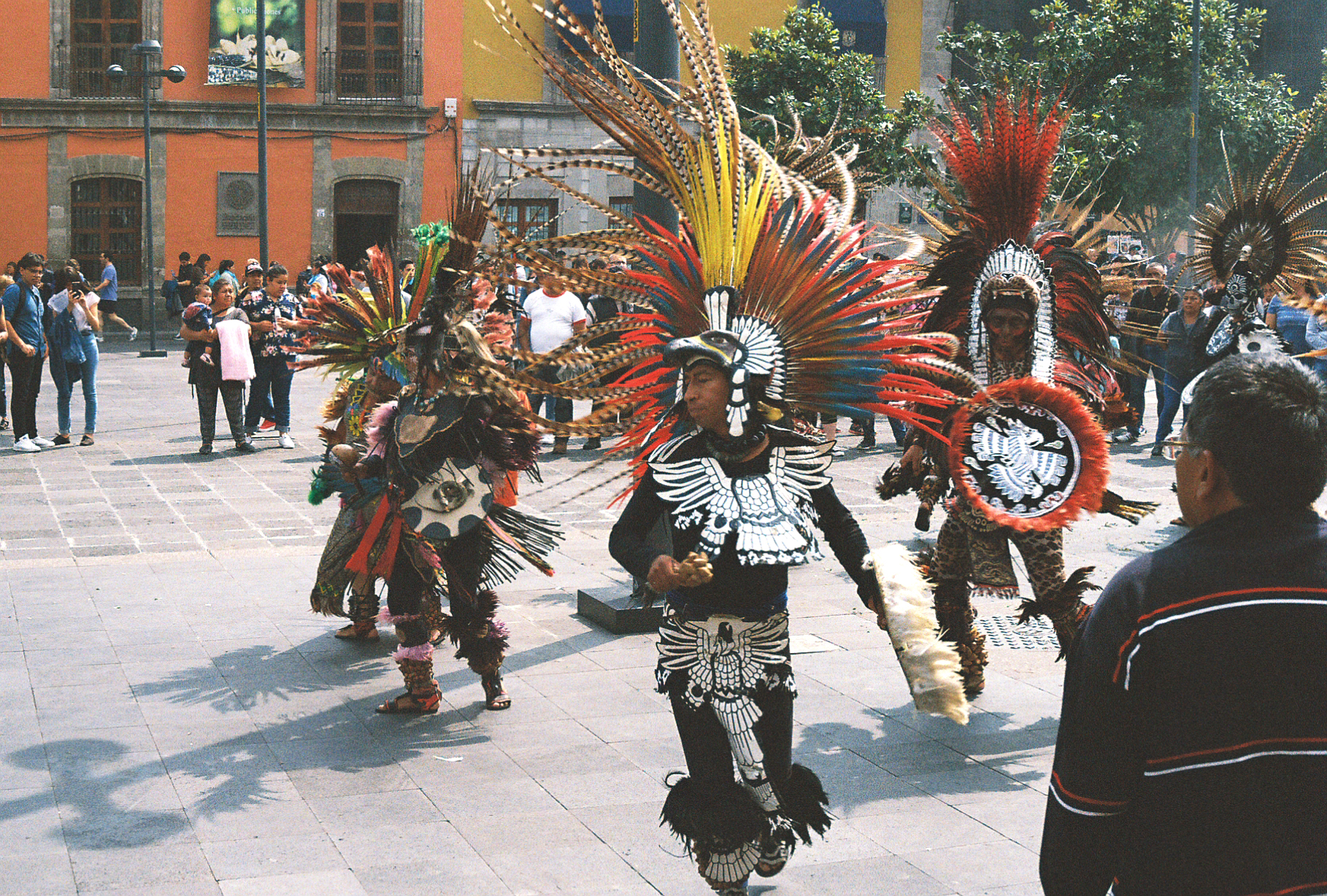 Native Aztecs performing ceremonial dance outside Mexico City Metropolitan Cathedral, shot on 35mm film. Amazing feather headdresses.